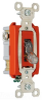Pilot Light Switch -- PS20AC1-CPL - Image