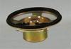 Speaker -- 40RA100M