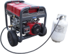 Propane/Natural Gas 10,000 Watt w/ Electric Start