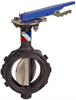 Butterfly Valve - Ductile Iron, Wafer Type, 100 PSI, Actuated -- WD-L110