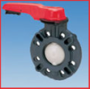 Type 57 Thermoplastic Butterfly Valves