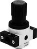 LR-1/4-D-O-MINI Pressure regulator -- 162591