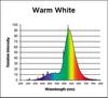 FC12T9/32 WATT/WARM WHITE CIRCLINE