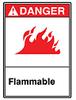 ANSI Sign, Danger-Flammable, 10