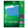 Self-Adhesive Filing Labels, 1/3 Cut, 2/3 x 3-7/16, Clear, 4 -- 5029