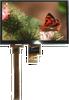 TFT Display Module -- ASI-T-700MA8LN/D -Image