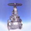 Cast Steel Globe Valve -- LD 002-GL - Image