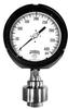 PTR Series Tamper Resistant Process Gauge -- PTR5061R1 - Image