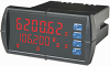 Dual-Line Rate/Totalizer Meter -- DS3000