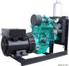Cummins 40 kW Diesel Generator
