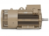 Quantum™ LMV Induction Motors - Image