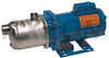 Goulds Delivery Pumps -- HMS-Series - Image