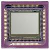 Image Sensors, Camera -- NOII5SC1300A-QDC-ND