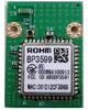 Wireless LAN Module with Flash Memory -- BP3599