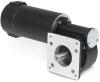 DC Gear Motors -- GPF13517