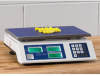 DO GAIN Economical Count/Weigh Scales -- 8121000 - Image