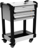 "MultiTek Cart 2 Drawer(s) (23""W X 16""D X 33""H) -- RV-DB33A2F004B -- View Larger Image"