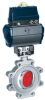 Double-offset Butterfly Valve -- DANAIS 150 C
