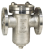 316 Stainless Steel, Flanged, Basket Strainers -- 0823235 - Image