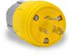 20A Electrical Plug: watertight, locking, NEMA L6-20 -- 26W48BRY
