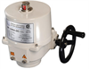 Quarter-Turn Electric Actuator -- P6 Series