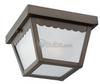 One-Light Outdoor Ceiling Light Fixture -- 75467-71