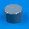 CPVC Socket Cap -- 30039 - Image