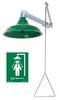 Emergency Shower,Horiz/Vert,20 gpm -- 16D376
