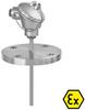 Sensor with Flange and Extention Tube -- OPTITEMP TRA/TCA-F13