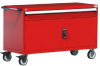 R Mobile Cabinet, with Partitions, 1 Drawers (60