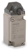 Limit Switch,Standard Roller -- D4A1101N
