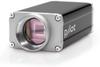 Basler pilot camera, piA2400-17gc, 2456 x 2058, 17 fps, Color -- 782209-01