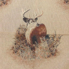 5 Star Deer Tapestry Fabric -- RH-Mule Deer - Image