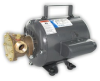 11810 Bronze AC Pump -- 11810-0011