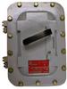 Explosionproof Enclosed Circuit Breaker -- AEAB12615C - Image