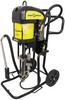 Airless Paint Pump -- AZUR™ 52C225 - Image