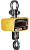 VESTIL Crane Scales -- 5678100 - Image