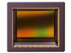 Global Shutter Cmos Image Sensor -- CMV8000 - Image