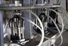 Transflow® M-34R Raw Milk Tubing -- ACK05087
