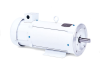 Washdown DC Motors -- CDPWD3306