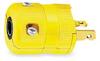 Plug,2-20 NEMA -- 3D299