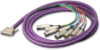 DB25 Breakout Cable -- DB25M10DB25MY