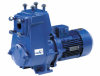 Horizontal, Self-priming Volute Casing Pump -- Etaprime B /BN