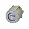 Ultrasonic Flare Gas Mass Flowmeter Transmitter -- DigitalFlow XGF868i -- View Larger Image