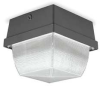 High Abuse Fixture,Metal Halide,100 W -- 1THR9