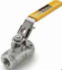 Stainless Steel Ball Valves Series 502SS -- Locking Handle, Female Pipe Ends, Panel Mount XVP502SS