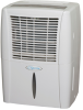 30 Pints Per Day Portable Dehumidifier -- BHD-301-G - Image