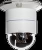 Indoor Speed Dome IP Camera -- DCS-6616 - Image