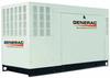 Generac QuietSource Series 48 KW Standby Power Generator -- Model QT04842JNAX - Image