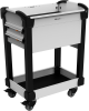 MultiTek Cart 2 Drawer(s) -- RV-GB37S2F004L3B -Image
